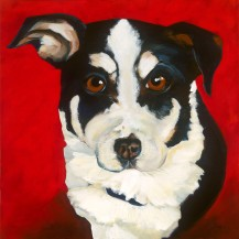 """Buster, Acrylic on canvas, 24"""" x 24"""" SOLD, giclee available"""